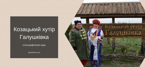 Особливості організації сільського туризму в Дніпропетровській області